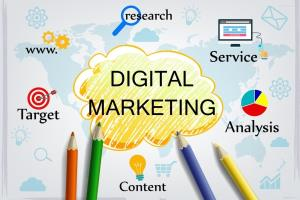 Portfolio for Digital Marketing/Social Media Marketing