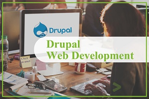 Portfolio for Drupal Web Development