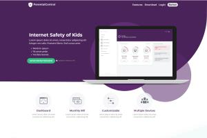 Portfolio for Professional Web Developer