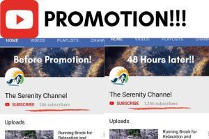 Youtube Subscribers!