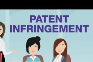 Portfolio for Infringement search