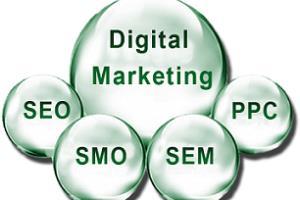 Portfolio for Digital Marketing & SEO Expert