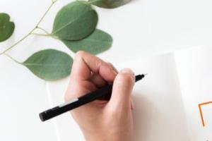 Portfolio for First Class Writer & Editor