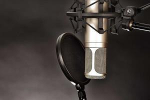 Portfolio for Voice Over Acting
