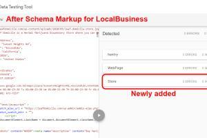 Portfolio for On page SEO and schema markup