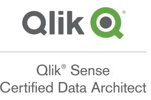 Portfolio for Visual Analytics (Qlik Expert)