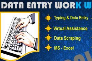 Portfolio for Data Entry, PDF Conversation, MS Excel