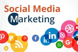 Portfolio for Social Media Marketing Expert, Manager