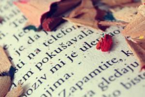 Translations & Content Writing