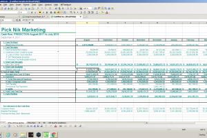 Portfolio for Financial Managment Reporting