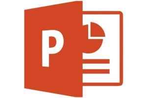Portfolio for Management Planning