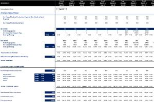 Portfolio for Financial Modelling - Projections