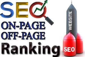 Portfolio for Rank#1 on Google by Off-Page/On-Page SEO