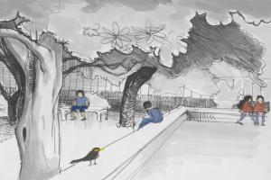 Portfolio for Drawing & Sketching