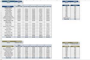 Portfolio for MIS Manager - Excel Expert