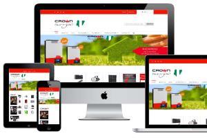 Portfolio for Shopify Website Dev Consultant