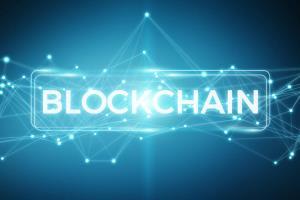 Portfolio for Senior BlockChain & Security Expert