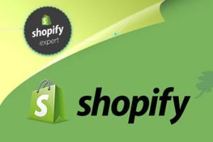 Portfolio for Shopify custom theme design