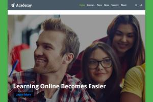 Portfolio for Wordpress web Design & Customization