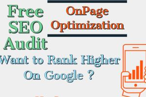 Portfolio for Search Engine Optimization,SEO Audit