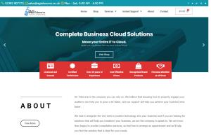Portfolio for Custom WordPress Websites