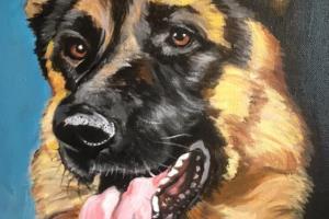 Portfolio for Pet Portrait oil on canvas