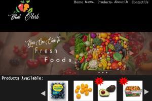 Mint herb website front page design sample