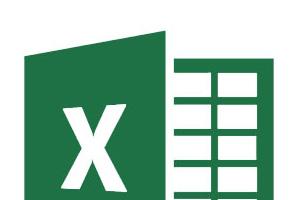 Portfolio for Spreadsheet