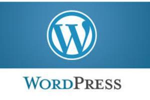 Portfolio for Wordpress Solutions