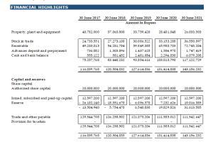 Portfolio for Business Plan