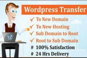 Portfolio for Wordpress website Migration/ Backup/move