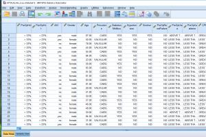Portfolio for DATA ENTRY AND ANALYSIS IBM SPSS