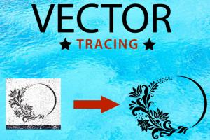 Portfolio for Vector Tracing