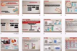 Portfolio for Prezi And Power Point Presentations