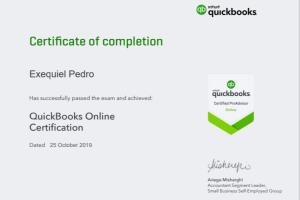 Portfolio for Remote Bookkeeping Quickbooks Online