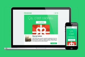 Portfolio for Email Template / Newsletter Design