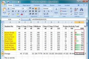 Portfolio for Data Entry, MS excel Expert