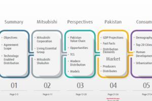 Portfolio for Business Consultants