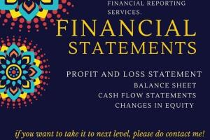 Portfolio for Profit and loss statement, Balance sheet