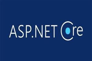 Portfolio for I will create an Asp.net website