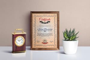Portfolio for Professional Certificate Design Expert