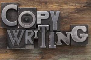 Portfolio for Proposal writer