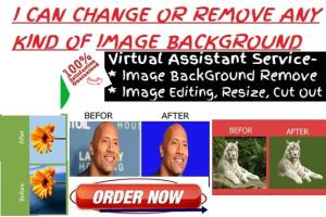 Portfolio for I can do IMAGE Background change/Removal
