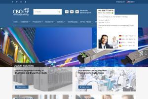 Portfolio for Search Engine Optimization ( SEO )