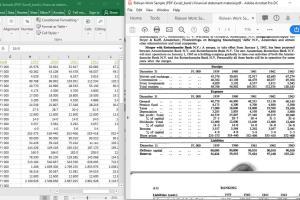 Portfolio for PDF Conversion-Fillable Form/Data Entry