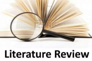 Portfolio for Assist in Literature Review