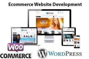 Portfolio for eCommerce Website & App Development