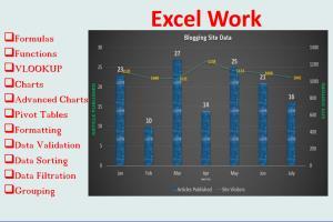 Portfolio for Excel Spreadsheet/ V LOOKUP/Charts/Pivot