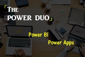 Portfolio for Power Apps Developer