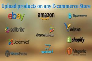 Portfolio for Product Listing / Writing